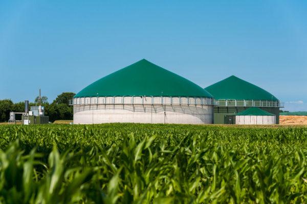 La bufala frequente dei Comitati No-Biogas